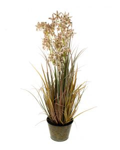 Laukka ruskea 95cm GRASS